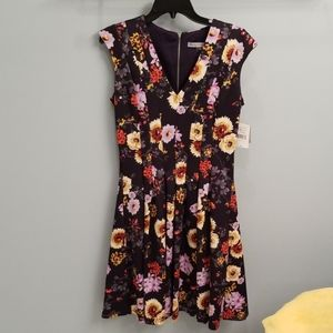 Danny and Nicole Sleeveless Dress in Size 8